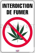 Affiche sur l'interdiction de fumer/consommer du pot/cannabis : « Interdiction de fumer »